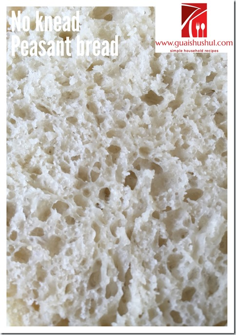 No Knead Simple Peasant Bread (免揉农夫面包)