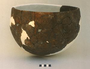 Plain Pot
