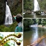 Reserva Natural Privada Ram Tzul, Purulhá Baja Verapáz, Guatemala