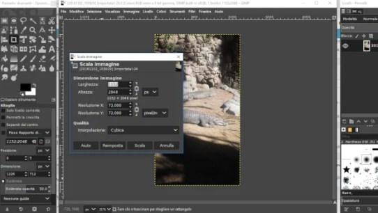 schermata per ridimensionare il file in gimp