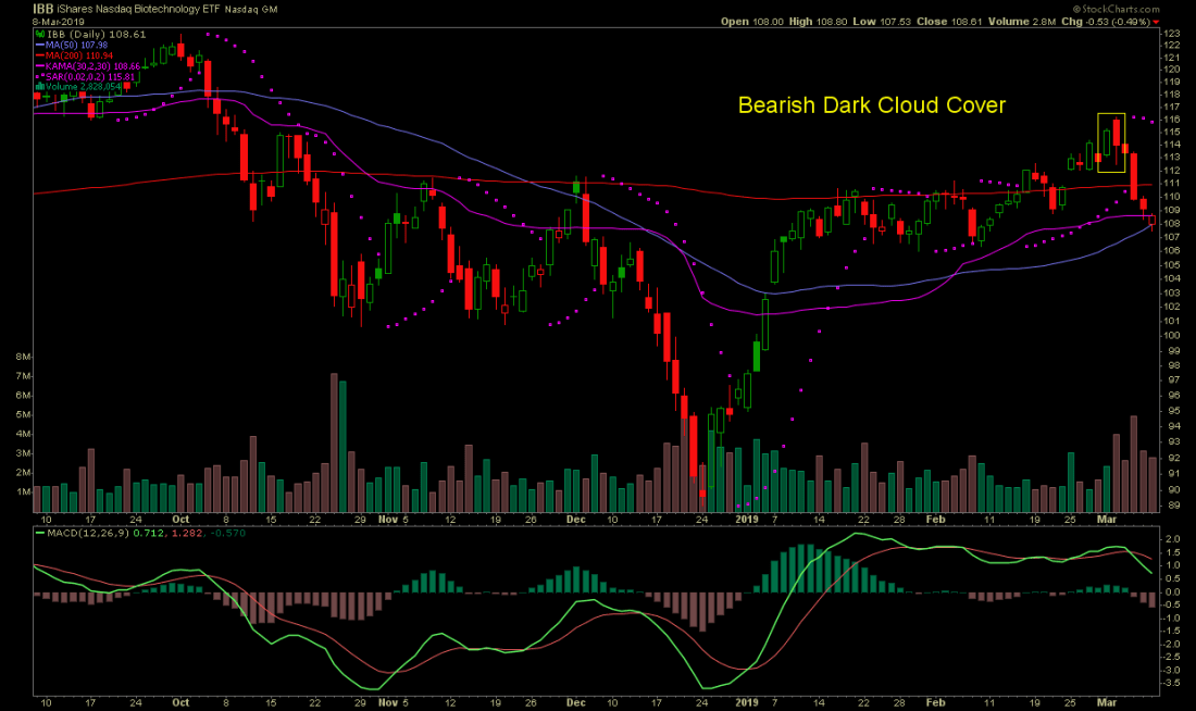 IBB stock chart with a Bearish Dark Cloud Cover candlestick pattern that occurred on March 4, 2019