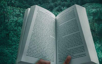 Letture consigliate per amanti delle foreste