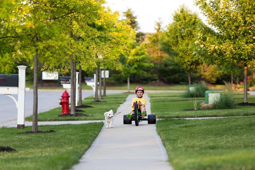 Criança com triciclo e cachorro.