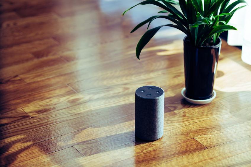 Electronic equipment smart speaker