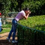 Pontos turísticos de Brasília oferecem opções para o Dia das Crianças
