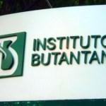 Instituto Butantan vai desenvolver soro para combater o ebola
