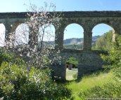 Acueducto-Almendro-GdA