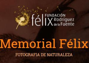 concurso-fotografia-naturaleza-felix-fuente