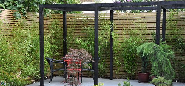 Bambú para modernizar tu jardín Artículo Publicado el 08.02.2014