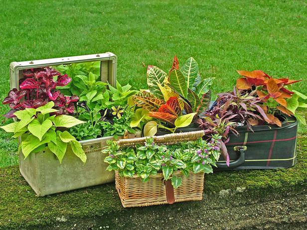 Anche le borse da viaggio e i cestini da picnic sono oggetti molto versatili; possono diventare graziose ed originali fioriere