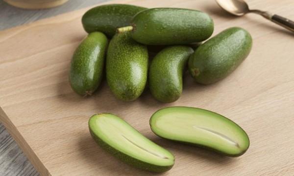 Le varietà nane di avocado non sviluppano seme poiché il frutto è davvero piccolo (7-8 cm)