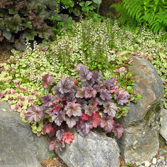 15 Idee Per Abbellire Il Giardino
