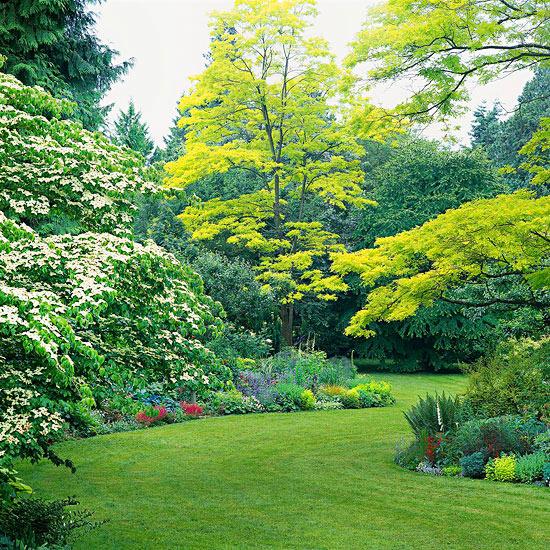 realizzare un paesaggio naturale suggestivo e rilassante