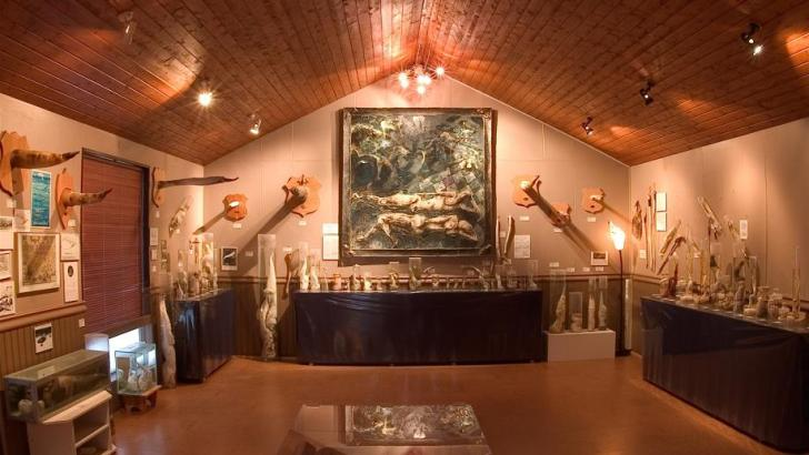 Museo de falos
