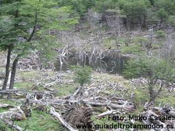 Ushuaia: ¡Más al sur no hay quien viva!