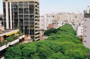 La calle más bonita del mundo está en BRASIL - Rua Gonçalo de Carvalho - tumblr_lzti06jPaY1r59suqo1_12801-300x197