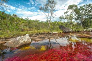 El río más hermoso del mundo, o el arco iris que se derritió - cano-cristales-5-300x199