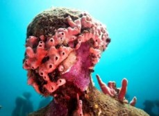 Esculturas submarinas en el Caribe - MUSA-300x219