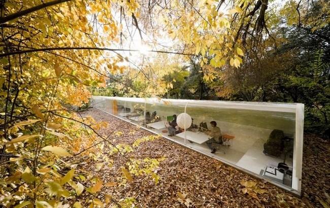 Trabajar bajo árboles en Madrid