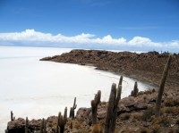 Salar de Uyuni, el espejo del cielo - Isla_de_Pescado_Bolivia_Salar_de_Uyuni_2-300x224