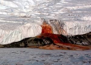 Las Cataratas de Sangre de la Antártida - Cataratas-de-sangre-300x213
