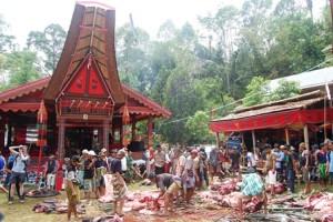Sulawesi, el hogar de los Toraja - Sacrificio-funeral-Tana-Toraja-300x200