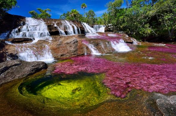 Caño Cristales (Colombia)