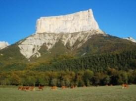 Chichilianne (Francia) - 106688028_medium_47976b-300x225