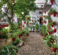 10 patios cordobeses que no te puedes perder - Calle-Mariano-Amaya4-300x282
