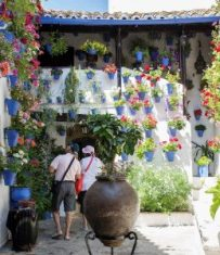 10 patios cordobeses que no te puedes perder - PATIO_POSTRERA_CORDOBA_28-1-259x300