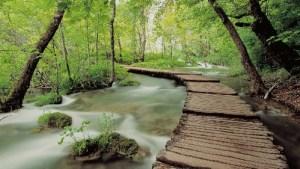 Lagos de Plitvice (Croacia) - parque-nacional-lagos-de-plitvice-300x169