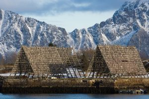 Reine (Noruega) - Tørrfisk-fra-Lofoten-IGP_06_QG-300x200