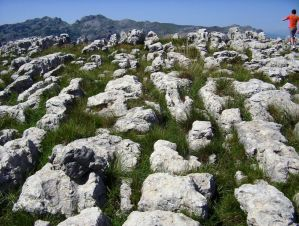 Setenil de las Bodegas - Lapiaz de Riotuerto - Cantabria (3)