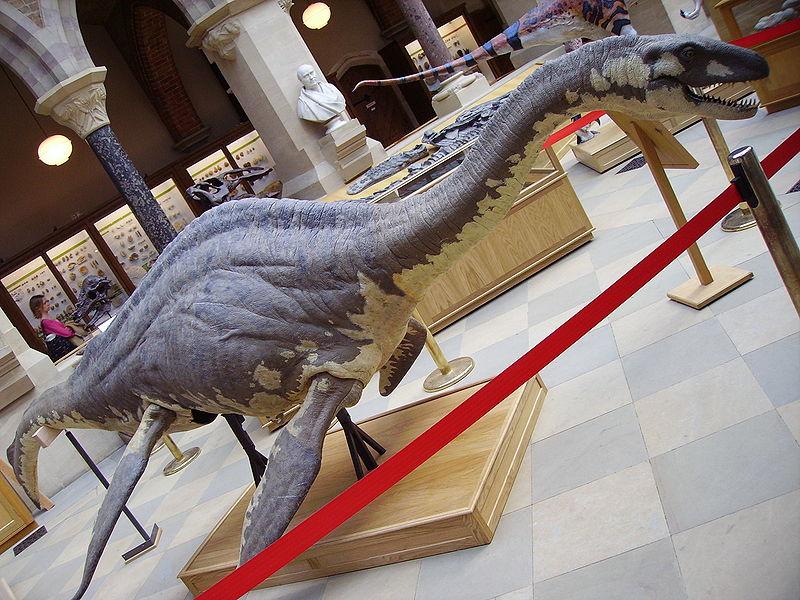 El Monstruo de Leganés - Desde el primer avistamiento se describió al monstruo como un animal de cuerpo grande y cuello alargado (1)