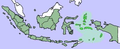 El Galeón de Manila - Las islas Molucas abastecían a todo el mundo de pimienta, clavo y otras especias. Su control fue origen de la mayor expansión geográfica de la historia (12).