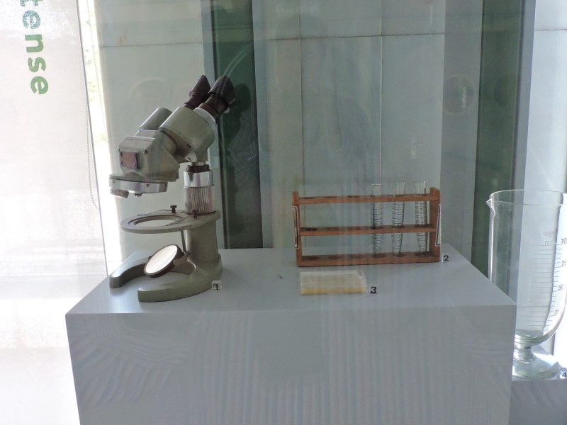 Museo Veterinario Complutense - Lupa binocular para observar parásitos, tubos de ensayo y cámara de Mcmaster, para contar huevos en heces.