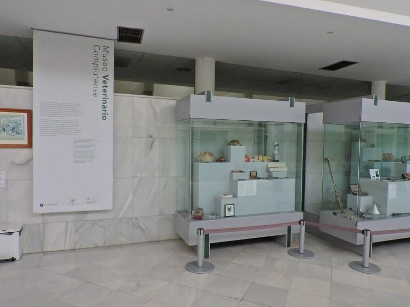 Museo Veterinario Complutense - En la recepción del hospital hay ya tres vitrinas con instrumental veterinario.