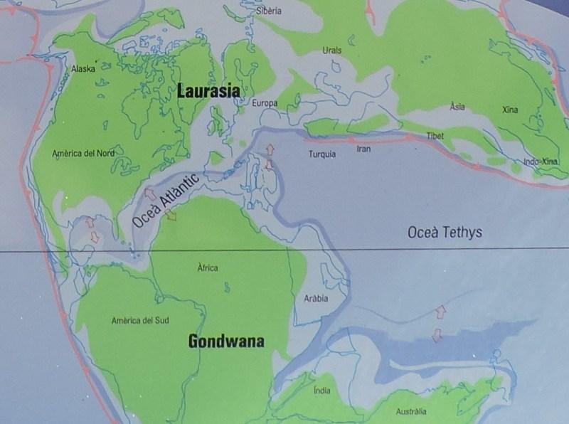 La Montaña de Sal - El desplazamiento de Cimmeria hizo desaparecer Paleo-Tetis y produjo la ruptura de Pangea.