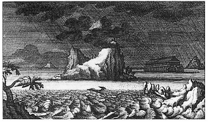Museo Religioso-Paleontológico - Antiguamente se creía que algunos fósiles eran restos de animales que sufrieron el diluvio universal (2).