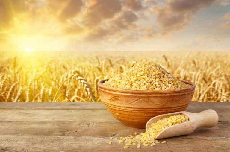 Plantas de trigo en el campo