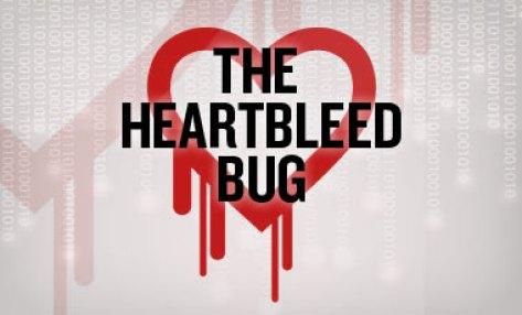 how-to-treat-heartbleed-bug-imageFileLarge-6-a-6731
