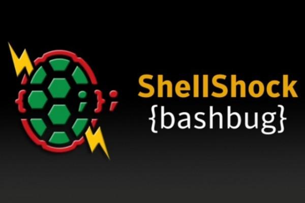 shellshock-600x401