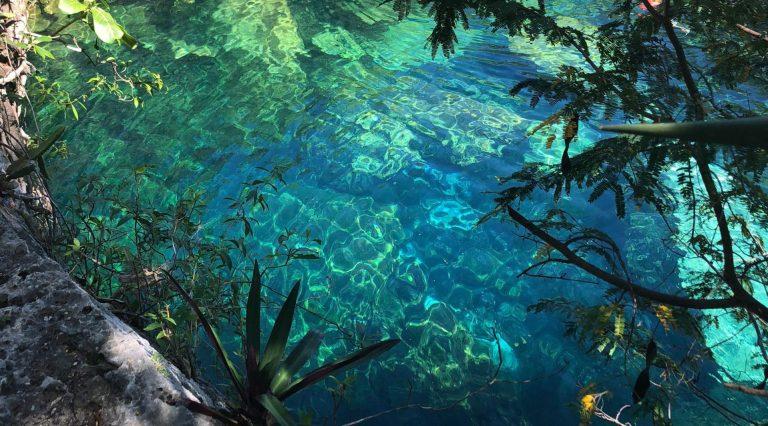Cenote Cristalino na Riviera Maya