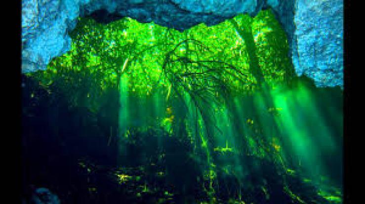 Cenote TajMa Ha na Riviera Maya