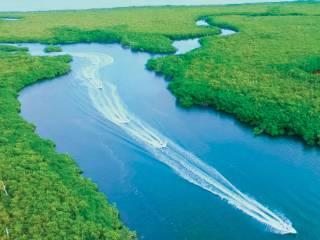Jungle Tour Cancun: Passeio Incrível pela Lagoa Nichupté