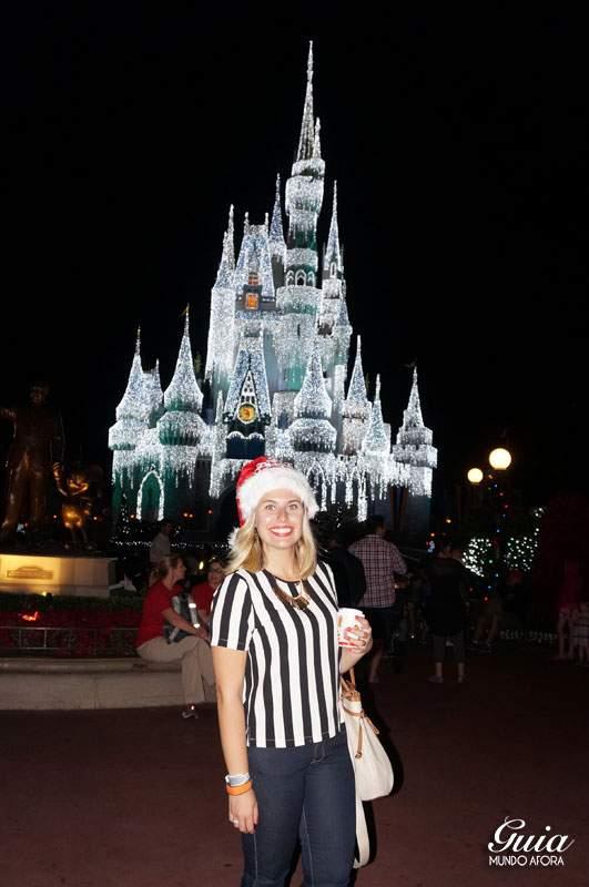 Castelo congelado pela Elsa. Lindo demais!