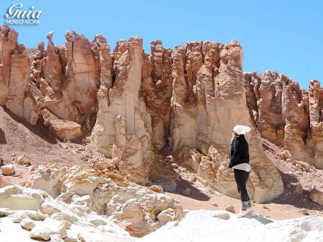 Salar de Tara no Deserto do Atacama