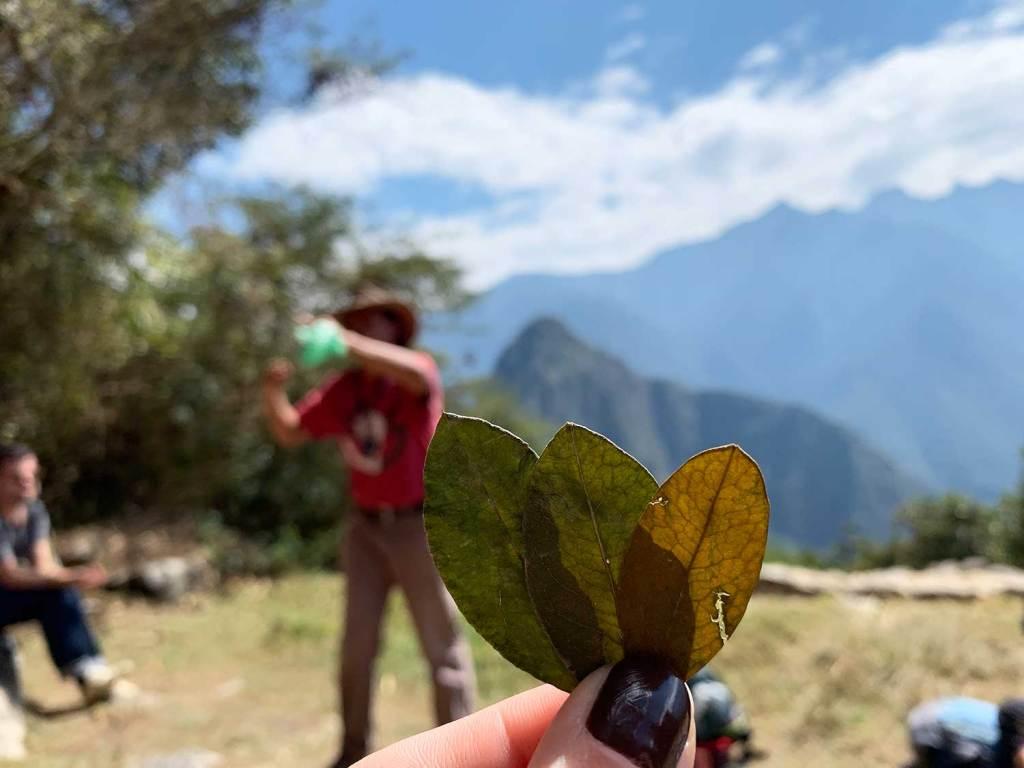 xamã em Machu Picchu