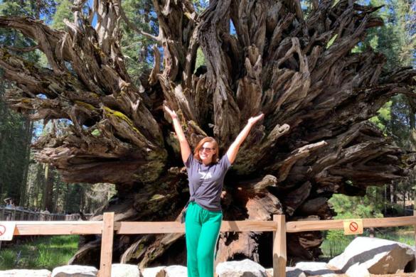 Yosemite Park na Califórnia: o que fazer e dicas práticas