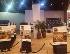 Exposição e workshops